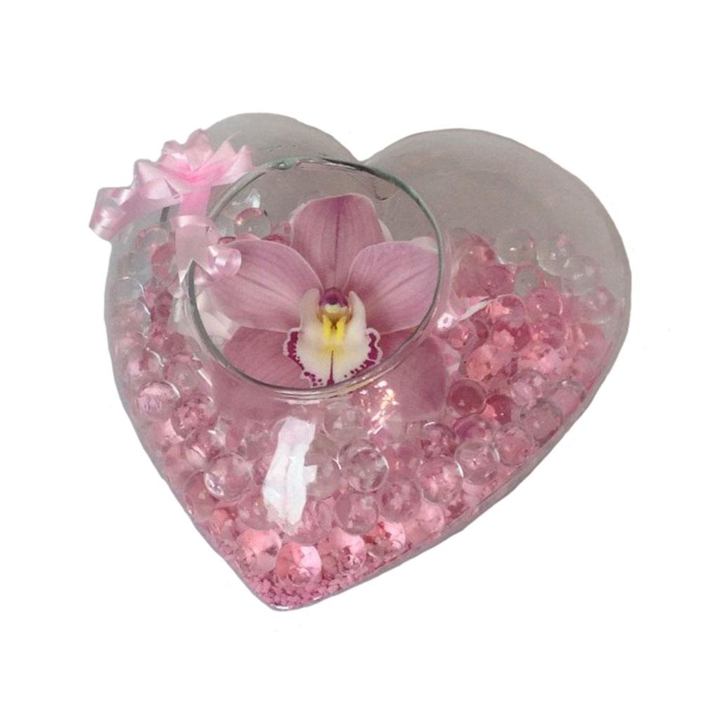 Corazón de cristal Orquídea cimbidium